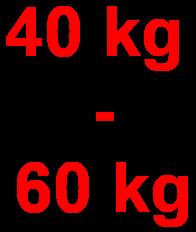 Dickenhobel mit 40kg bis 60kg